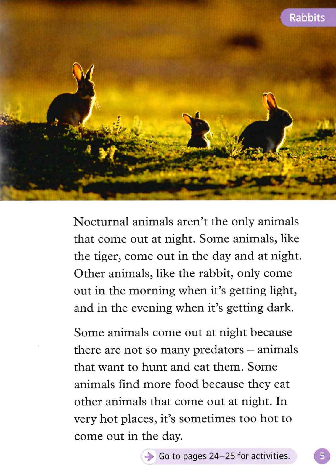 an introduction to the analysis of they cage the animals at night The carnival of the animals (french: le carnaval des animaux) is a musical composition by camille saint-saëns it is one of the best known pieces of classical music for children it is one of the best known pieces of classical music for children.